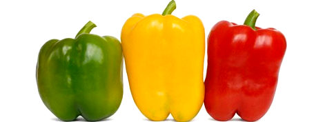 Fresh red pepper fresh yellow pepper fresh organic capsicum